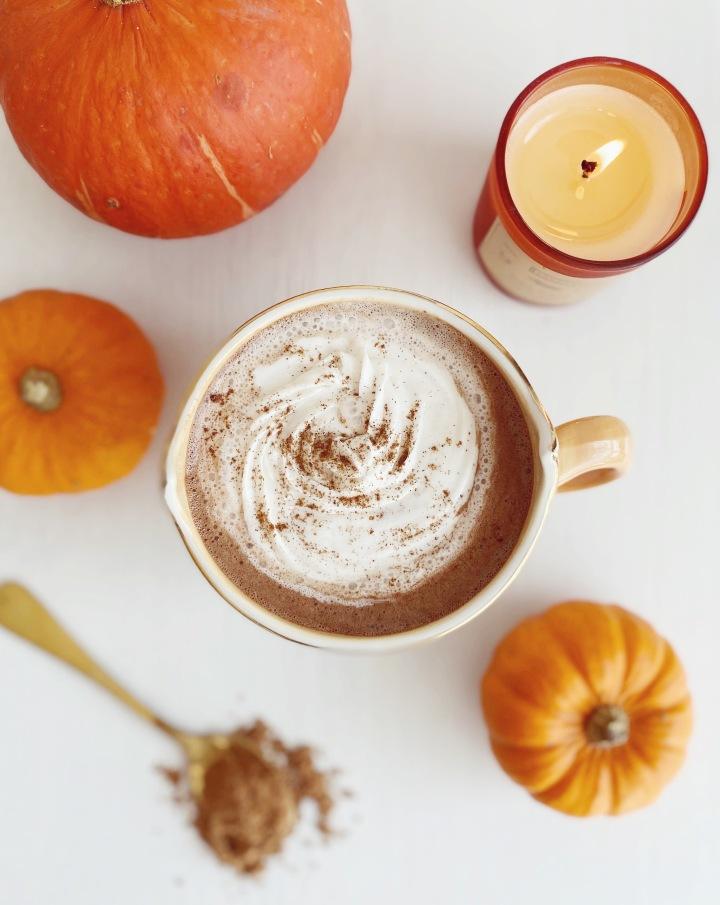 vegan-caffeine-free-peppermint-hot-chocolate