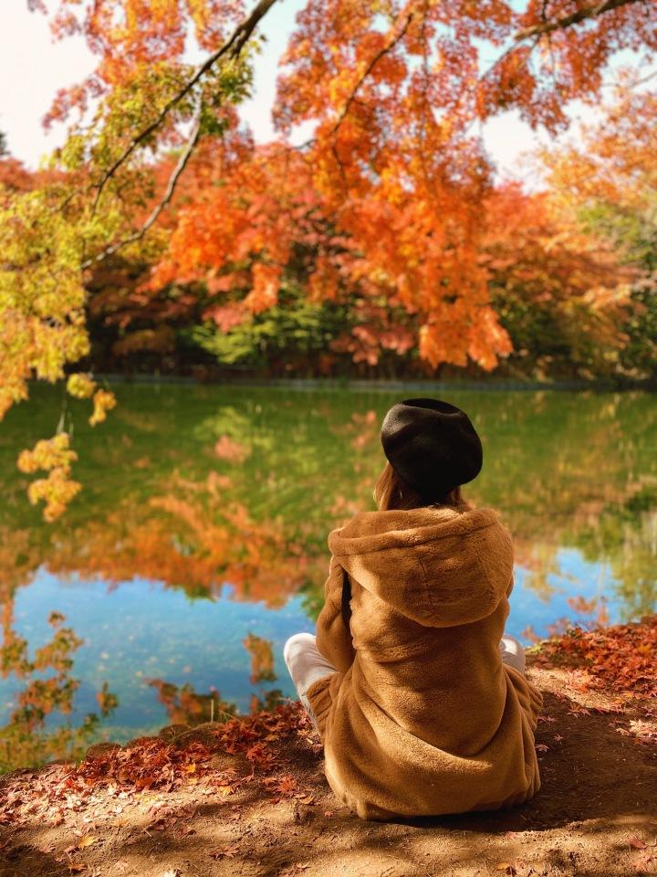 Autumn Leaves InKaruizawa