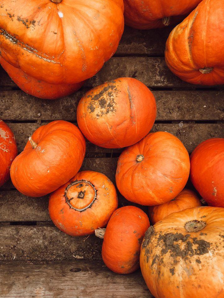 Slow Living Series: Planning A Simple, Grateful AutumnSeason