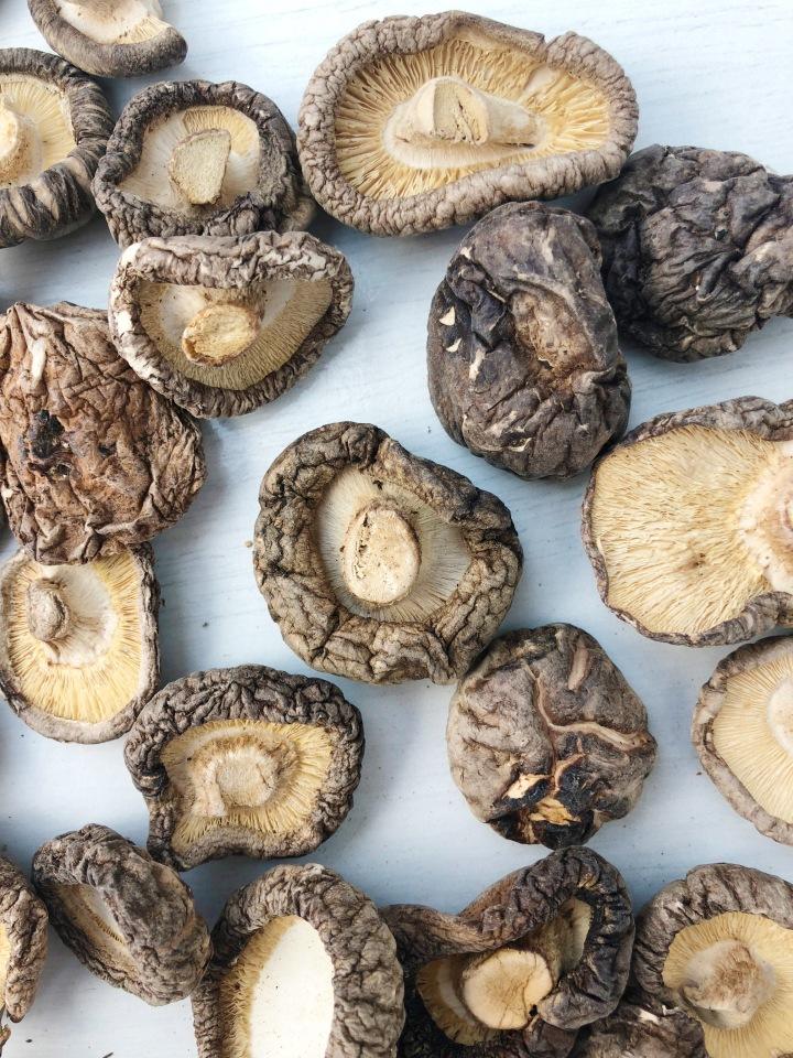 Benefits Of Mushrooms Vegan